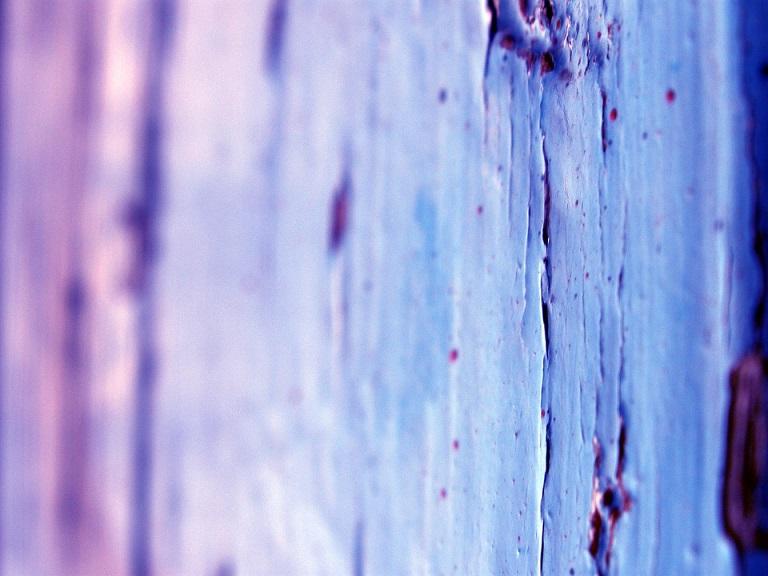 830+ Gambar Dinding Keren Dan Mudah Ditiru HD Terbaru