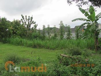 Tanah Murah Dijual di Bantul