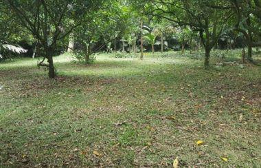 tanah dijual di bojonggede